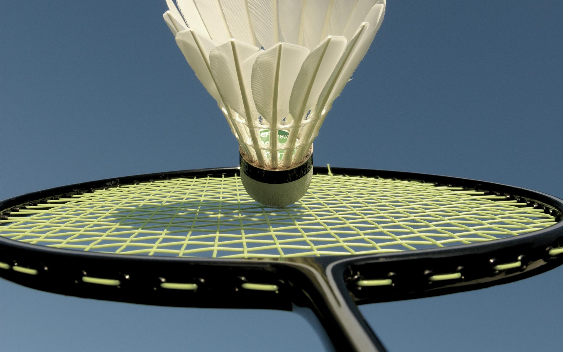 Championship Badminton Banner